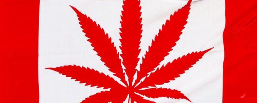 Légalisation du cannabis et implications sur l'immobilier a Montréal