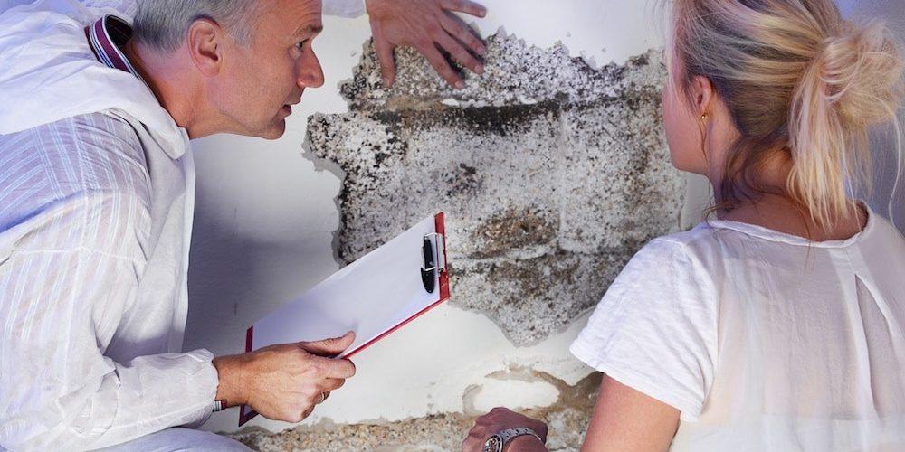 Élimination des moisissures de grenier